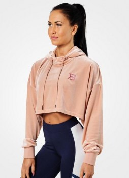 Better Bodies Chrystie Crop Hoodie