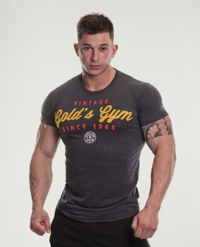 Golds Gym 1965 Vintage Print T-shirt-charc