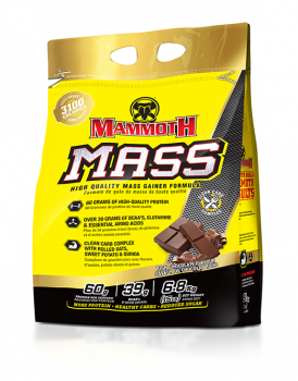 Interactive Nutrition Mammoth Mass 15lbs
