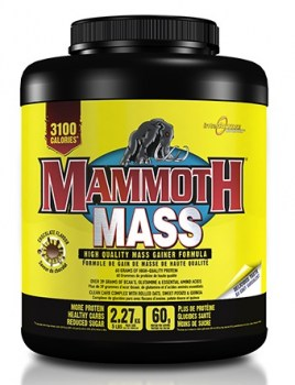 Interactive Nutrition Mammoth Mass 5lbs