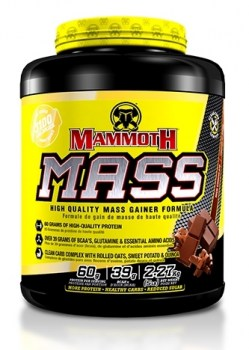 Interactive Nutrition Mammoth Mass new