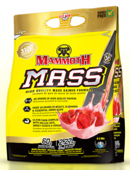 Interactive Nutrition_mammoth_mass_5_bag_strawberry_copie