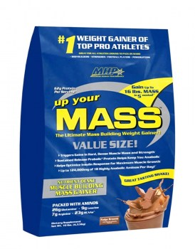 MHP Up Your Mass 1